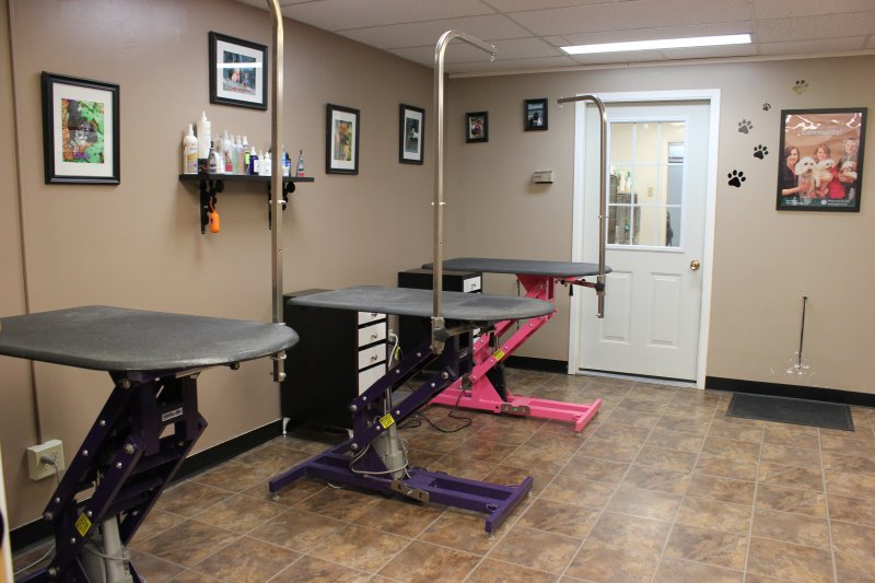 Grooming Area 2 - Victoria St