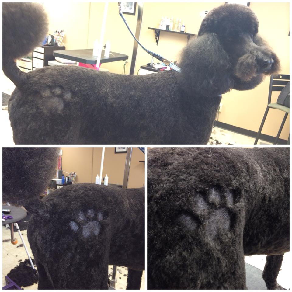 "Our first :Hair Design"" - A paw print"