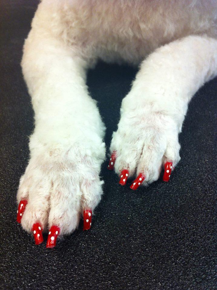 Beba's polka dot nails