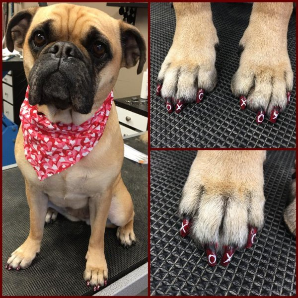 Berkely's Valentine's Day nails