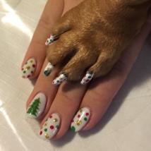 Matching Christmas nails