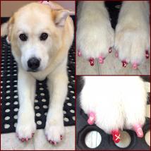 Cassie's Valentine's Day nails!