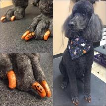 Sadie's sparkly orange Jack-o-Lantern nails!