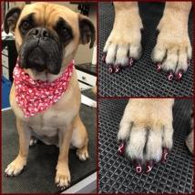 Berkely's Valentine's Day nails