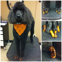 Sadie's Halloween nails!