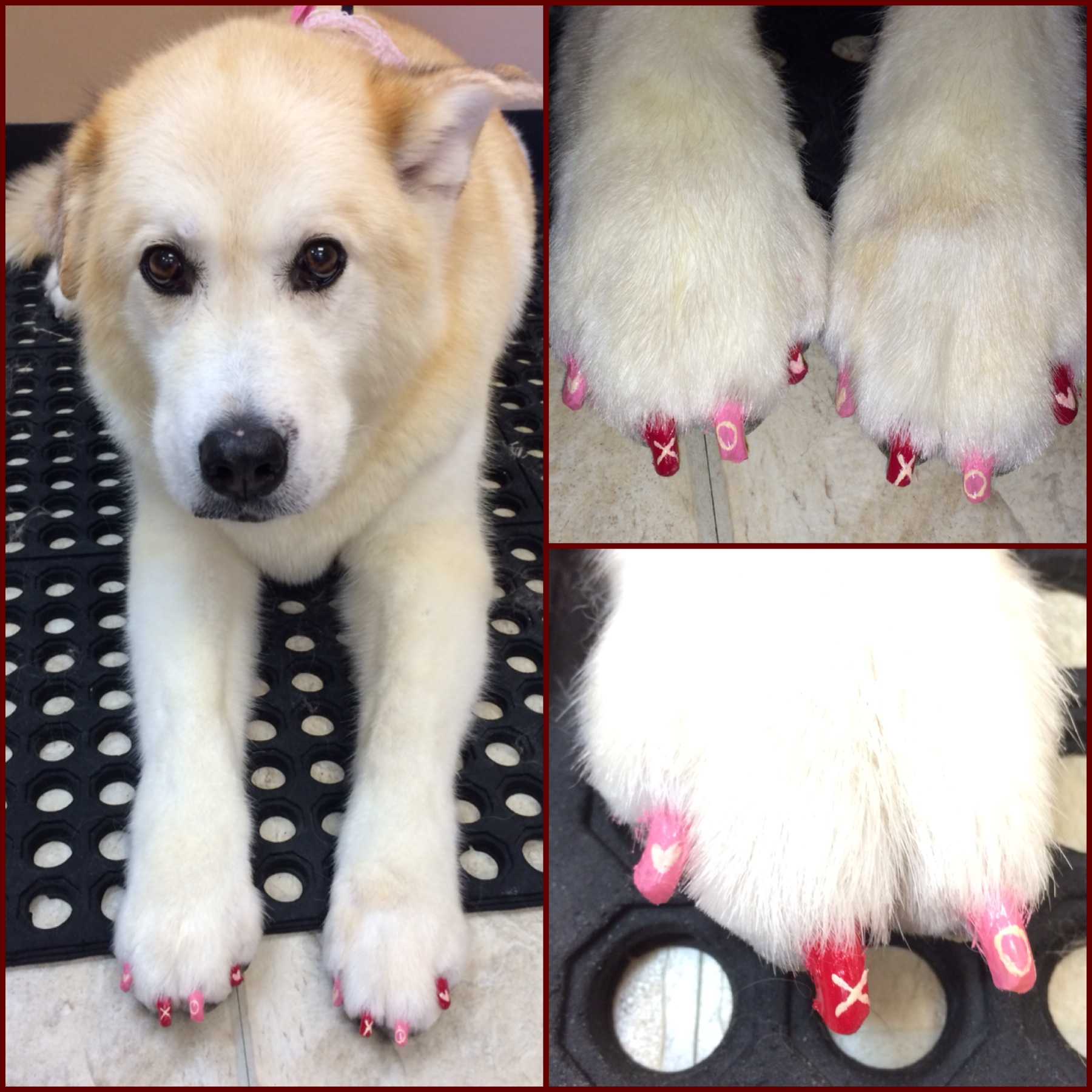 Cassie's Valentine's Day nails!
