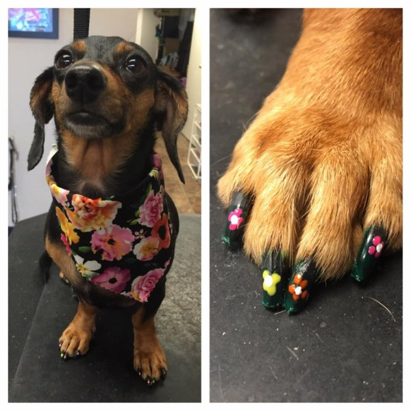 Ruby's flower nails