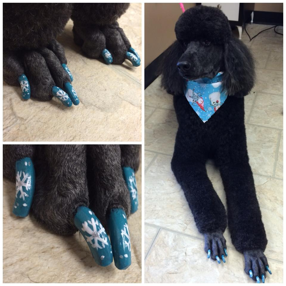 Sadie and her beautiful blue snowflake nails!