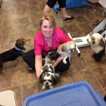 Nicole in her glory, surrounded by dogs!